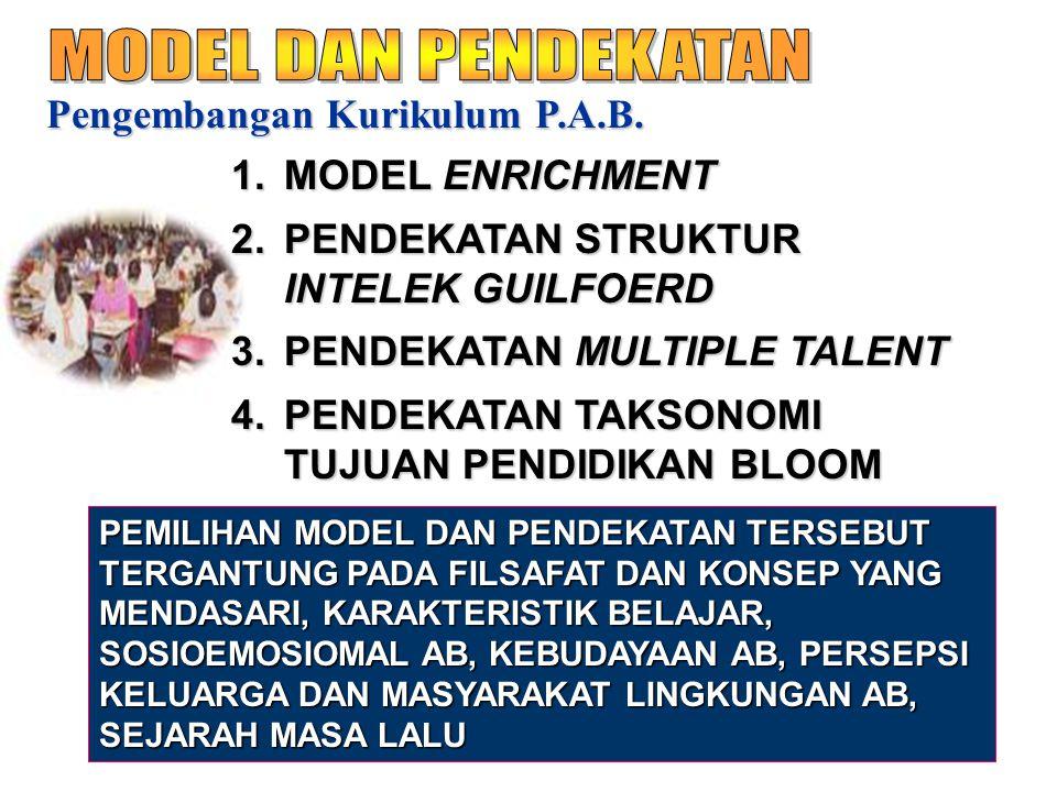 Pengembangan Kurikulum P.A.B. 1.MODEL ENRICHMENT 2.PENDEKATAN STRUKTUR INTELEK GUILFOERD 3.PENDEKATAN MULTIPLE TALENT 4.PENDEKATAN TAKSONOMI TUJUAN PE