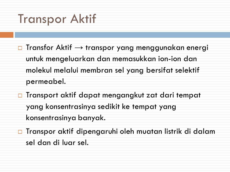 Transpor Aktif  Transfor Aktif → transpor yang menggunakan energi untuk mengeluarkan dan memasukkan ion-ion dan molekul melalui membran sel yang bersifat selektif permeabel.