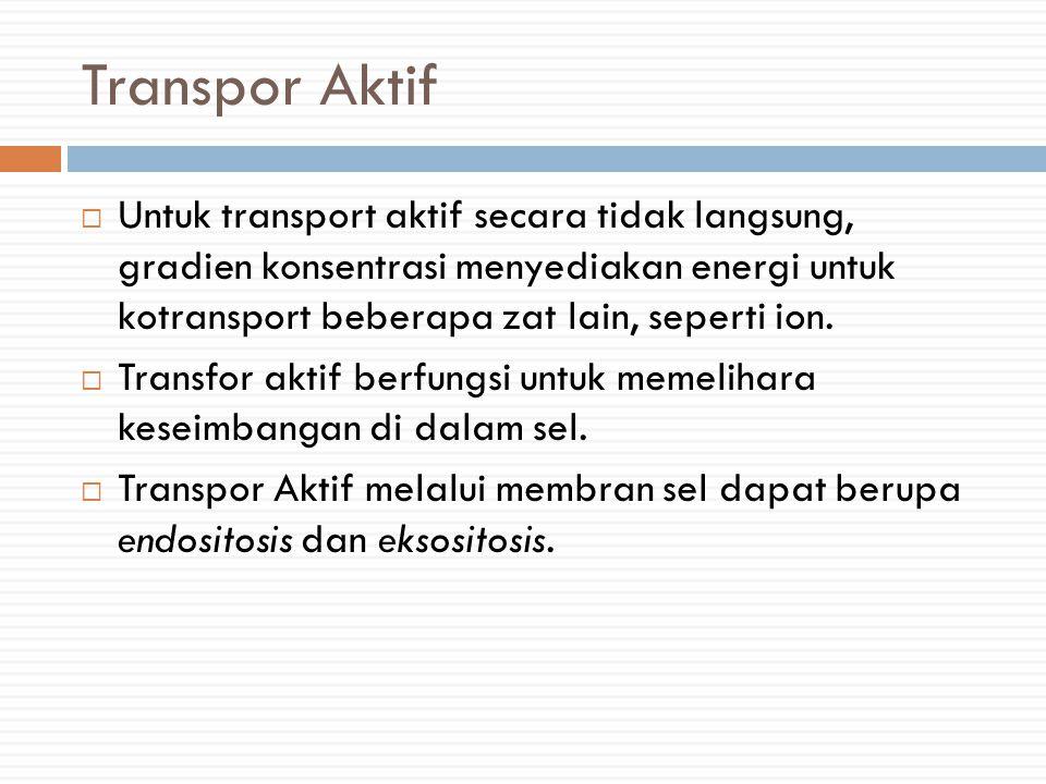 Transpor Aktif  Untuk transport aktif secara tidak langsung, gradien konsentrasi menyediakan energi untuk kotransport beberapa zat lain, seperti ion.