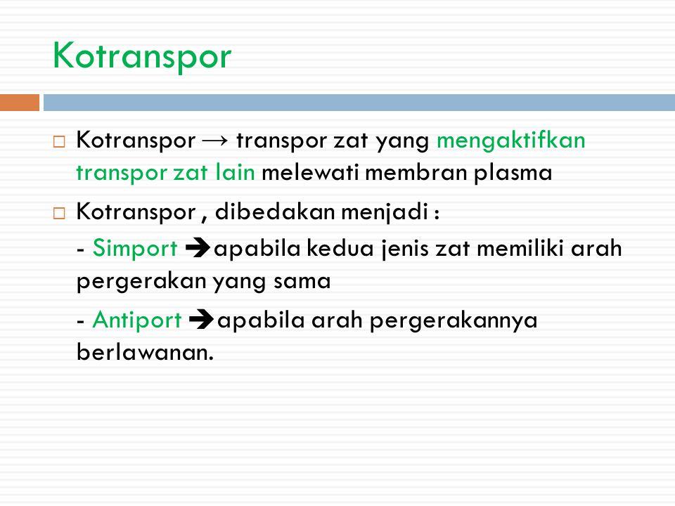 Kotranspor  Kotranspor → transpor zat yang mengaktifkan transpor zat lain melewati membran plasma  Kotranspor, dibedakan menjadi : - Simport apabila kedua jenis zat memiliki arah pergerakan yang sama - Antiport apabila arah pergerakannya berlawanan.