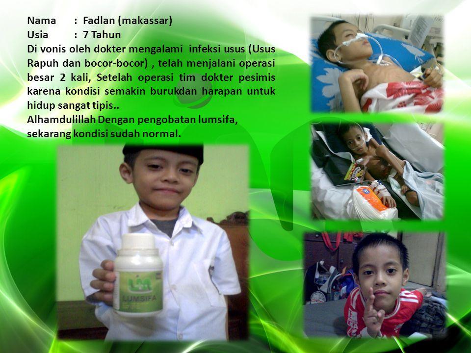 www.lumsifa.com PT.LUMSIFA INDONESIA MANDIRI