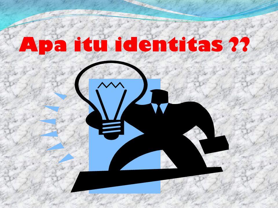 Apa itu identitas