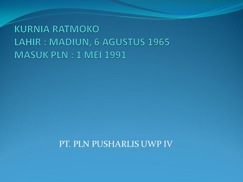 PT. PLN PUSHARLIS UWP IV