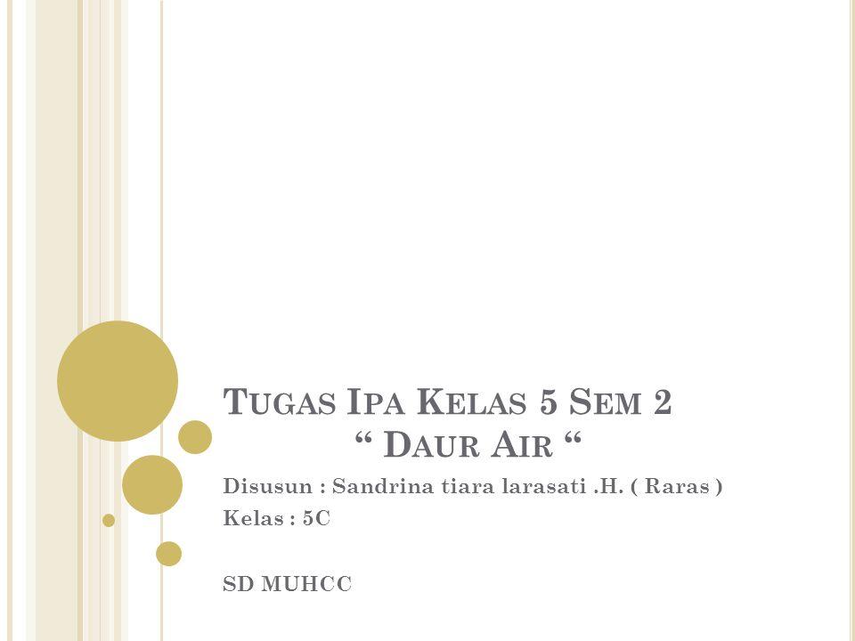 "T UGAS I PA K ELAS 5 S EM 2 "" D AUR A IR "" Disusun : Sandrina tiara larasati.H. ( Raras ) Kelas : 5C SD MUHCC"
