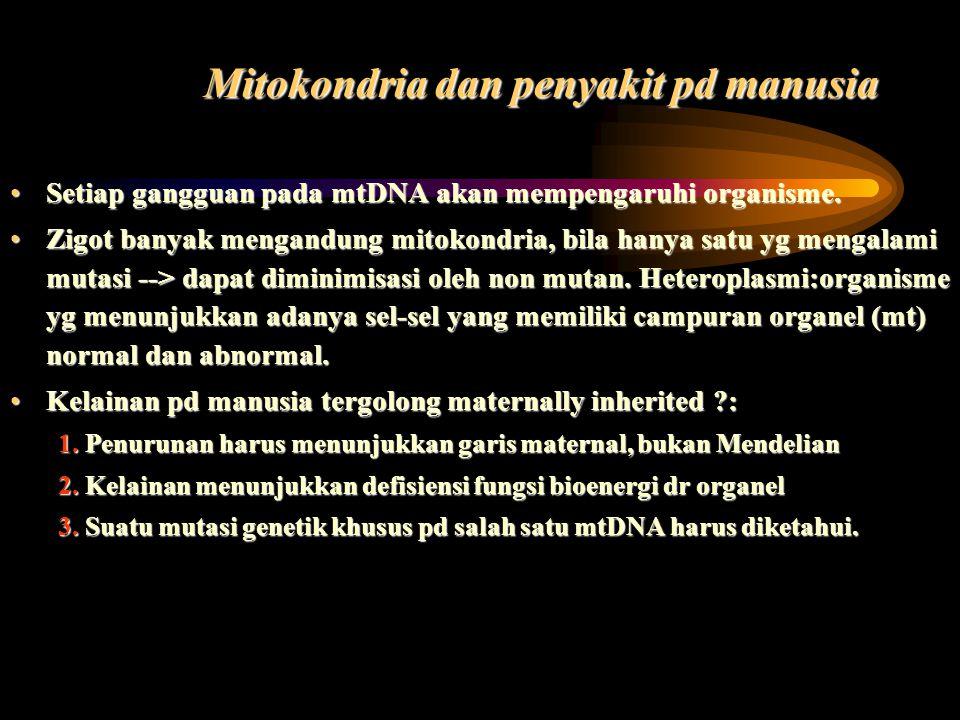 Mitokondria dan penyakit pd manusia Setiap gangguan pada mtDNA akan mempengaruhi organisme.Setiap gangguan pada mtDNA akan mempengaruhi organisme. Zig