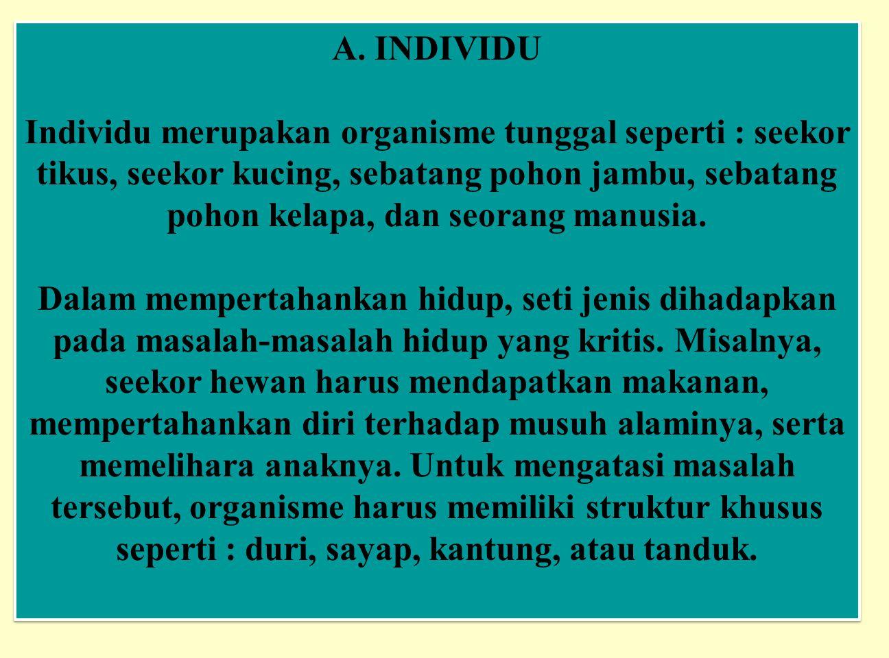 A. INDIVIDU Individu merupakan organisme tunggal seperti : seekor tikus, seekor kucing, sebatang pohon jambu, sebatang pohon kelapa, dan seorang manus