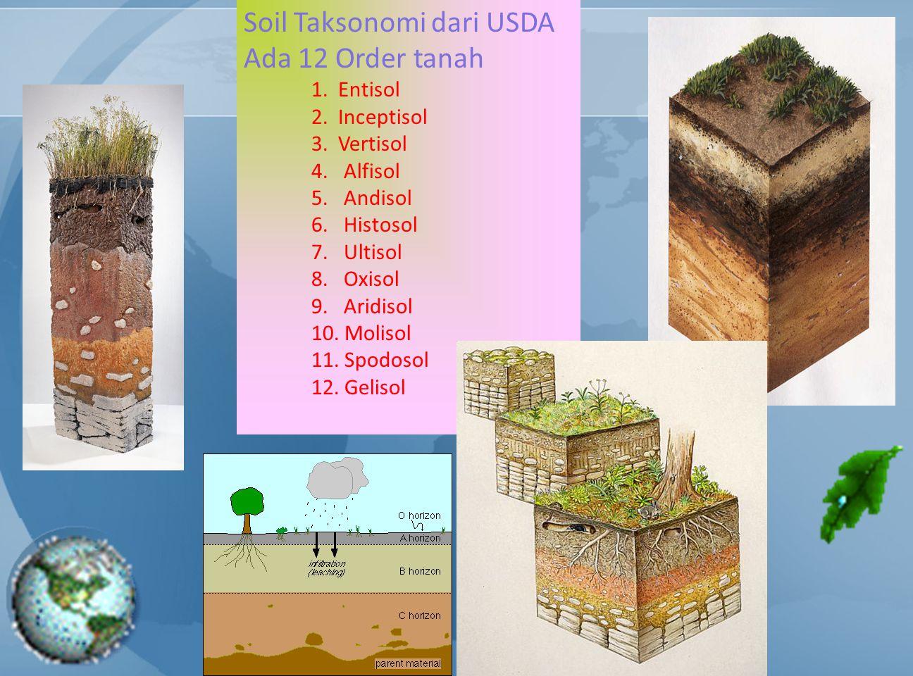 Soil Taksonomi dari USDA Ada 12 Order tanah 1. Entisol 2. Inceptisol 3. Vertisol 4. Alfisol 5. Andisol 6. Histosol 7. Ultisol 8. Oxisol 9. Aridisol 10