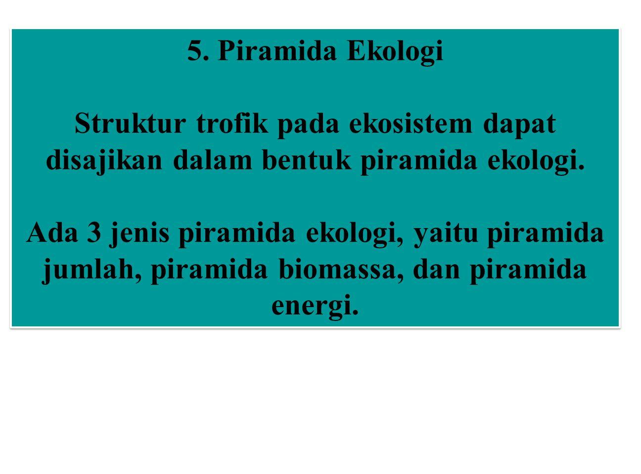 5. Piramida Ekologi Struktur trofik pada ekosistem dapat disajikan dalam bentuk piramida ekologi. Ada 3 jenis piramida ekologi, yaitu piramida jumlah,
