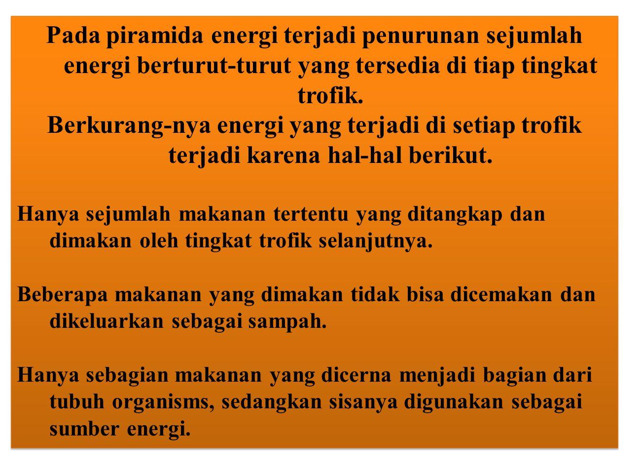 Pada piramida energi terjadi penurunan sejumlah energi berturut-turut yang tersedia di tiap tingkat trofik. Berkurang-nya energi yang terjadi di setia