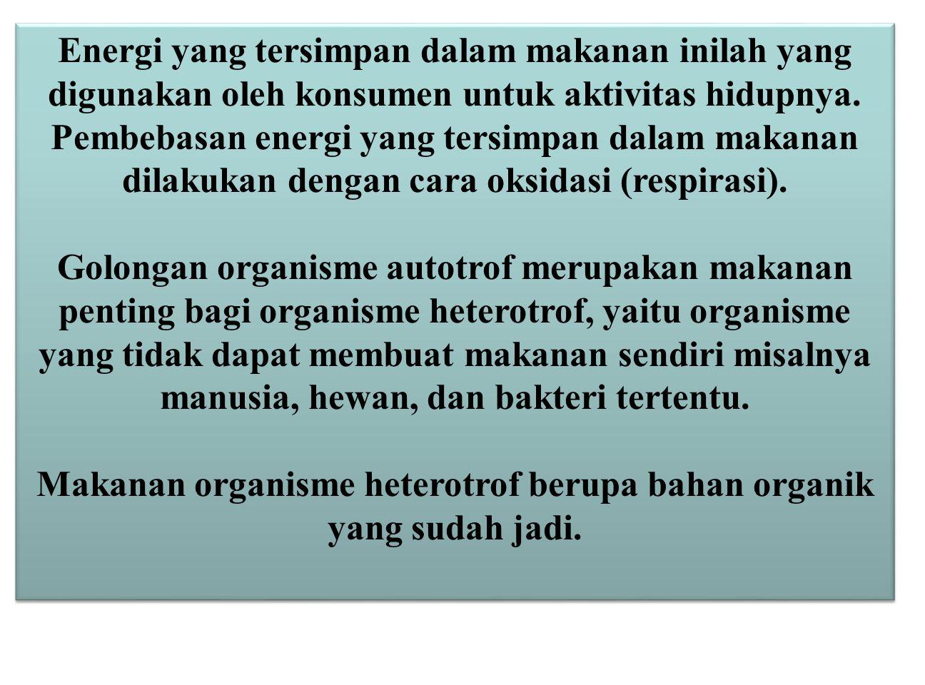 Energi yang tersimpan dalam makanan inilah yang digunakan oleh konsumen untuk aktivitas hidupnya. Pembebasan energi yang tersimpan dalam makanan dilak