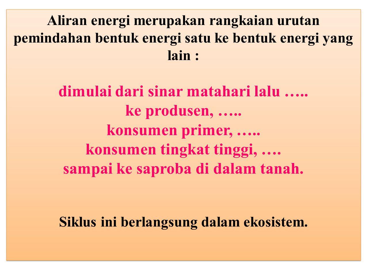 Aliran energi merupakan rangkaian urutan pemindahan bentuk energi satu ke bentuk energi yang lain : dimulai dari sinar matahari lalu ….. ke produsen,