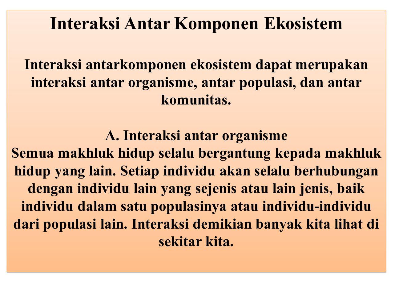 Interaksi Antar Komponen Ekosistem Interaksi antarkomponen ekosistem dapat merupakan interaksi antar organisme, antar populasi, dan antar komunitas. A