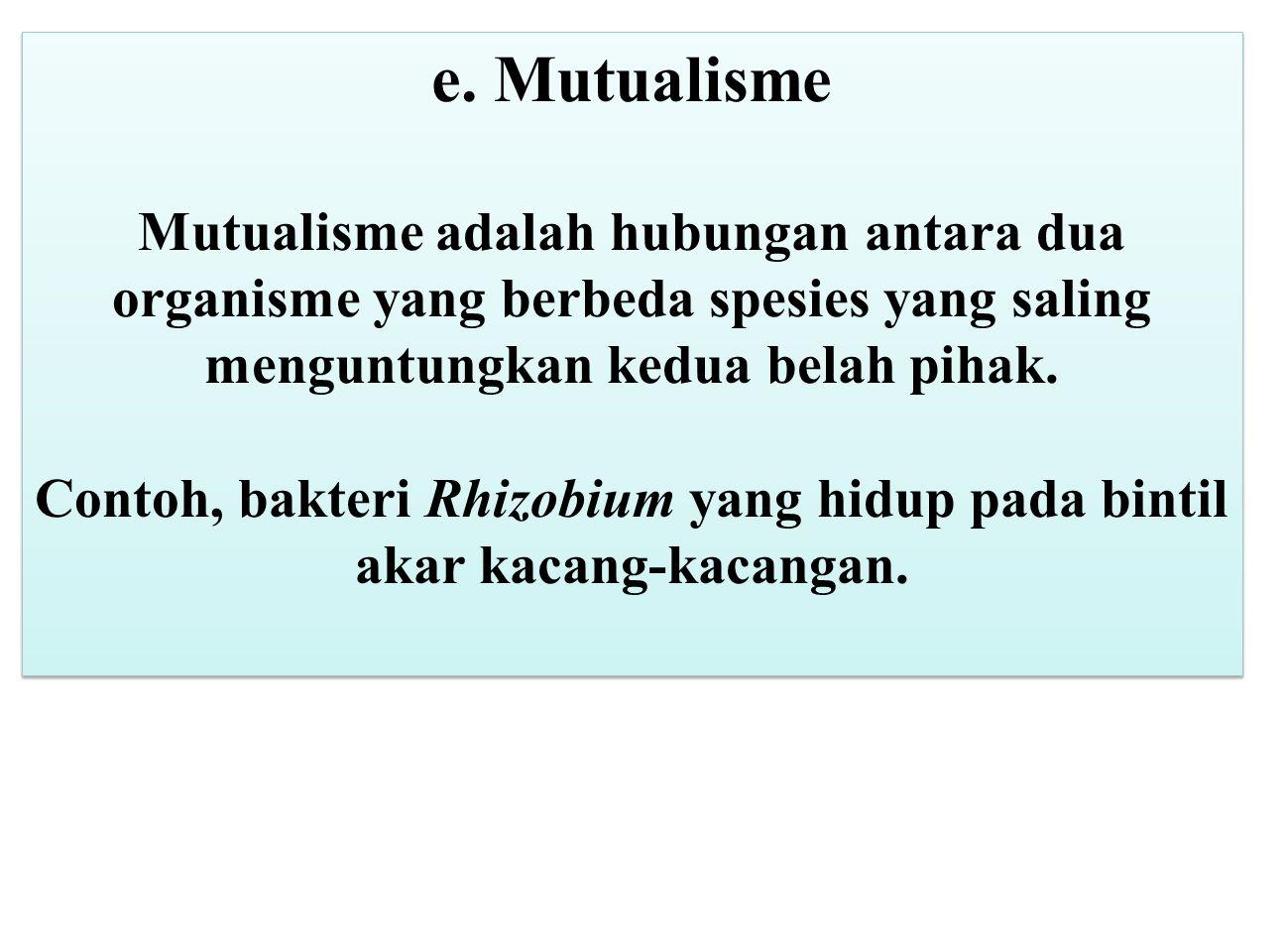 e. Mutualisme Mutualisme adalah hubungan antara dua organisme yang berbeda spesies yang saling menguntungkan kedua belah pihak. Contoh, bakteri Rhizob