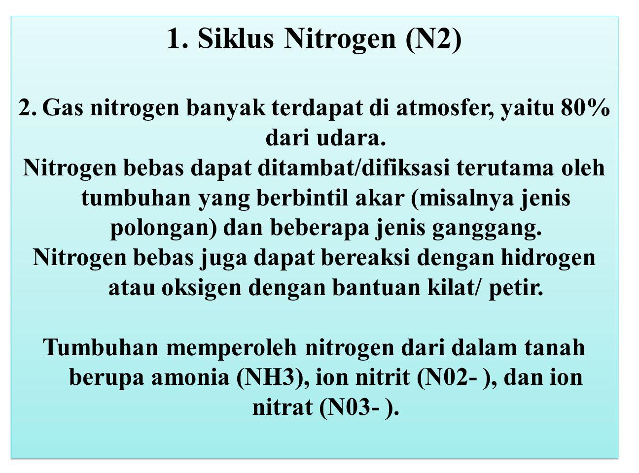 1. Siklus Nitrogen (N2) 2.Gas nitrogen banyak terdapat di atmosfer, yaitu 80% dari udara. Nitrogen bebas dapat ditambat/difiksasi terutama oleh tumbuh