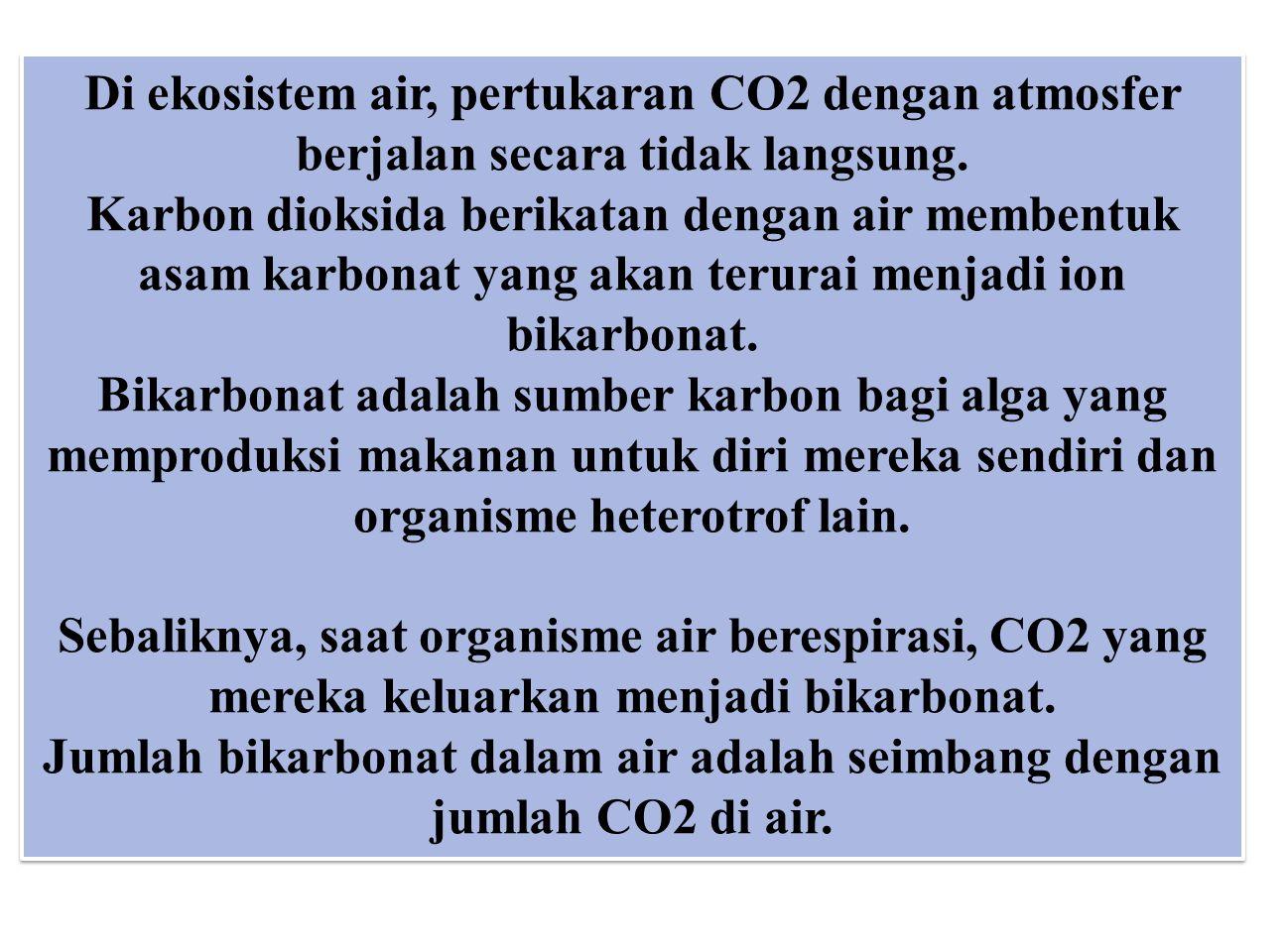 Di ekosistem air, pertukaran CO2 dengan atmosfer berjalan secara tidak langsung. Karbon dioksida berikatan dengan air membentuk asam karbonat yang aka