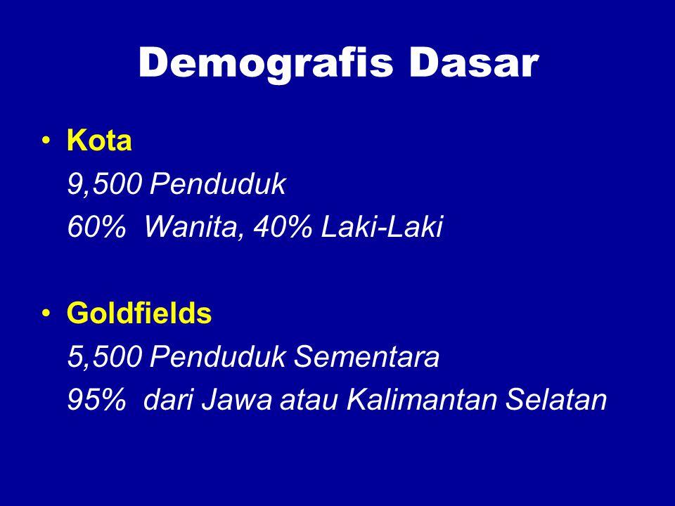 Demografis Dasar Kota 9,500 Penduduk 60% Wanita, 40% Laki-Laki Goldfields 5,500 Penduduk Sementara 95% dari Jawa atau Kalimantan Selatan