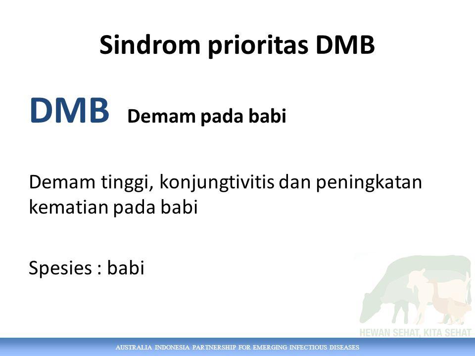 AUSTRALIA INDONESIA PARTNERSHIP FOR EMERGING INFECTIOUS DISEASES Sindrom prioritas DMB DMB Demam pada babi Demam tinggi, konjungtivitis dan peningkatan kematian pada babi Spesies : babi
