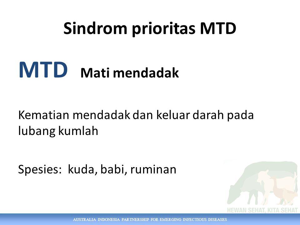 AUSTRALIA INDONESIA PARTNERSHIP FOR EMERGING INFECTIOUS DISEASES Sindrom prioritas MTD MTD Mati mendadak Kematian mendadak dan keluar darah pada lubang kumlah Spesies: kuda, babi, ruminan