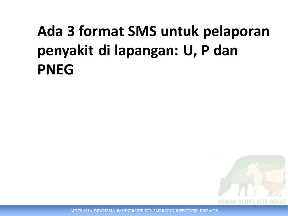 AUSTRALIA INDONESIA PARTNERSHIP FOR EMERGING INFECTIOUS DISEASES PK [ID kasus] [kode perkembangan kasus] ID Kasus Kode perkembangan kasus SB = Sembuh MS = Masih sakit MT = Mati PK 113357 SB CONTOH SMS PK