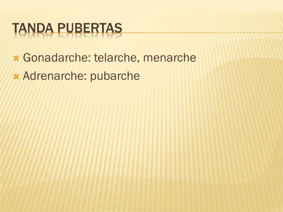  Gonadarche: telarche, menarche  Adrenarche: pubarche