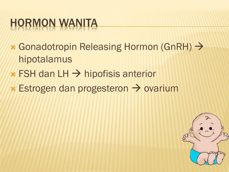  Gonadotropin Releasing Hormon (GnRH)  hipotalamus  FSH dan LH  hipofisis anterior  Estrogen dan progesteron  ovarium