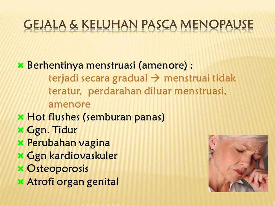  Berhentinya menstruasi (amenore) : terjadi secara gradual  menstruai tidak teratur, perdarahan diluar menstruasi, amenore  Hot flushes (semburan p