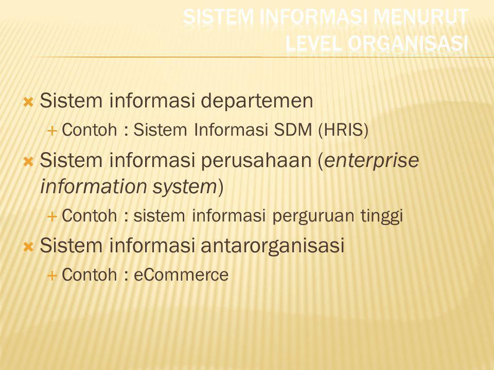  Sistem informasi departemen  Contoh : Sistem Informasi SDM (HRIS)  Sistem informasi perusahaan (enterprise information system)  Contoh : sistem i