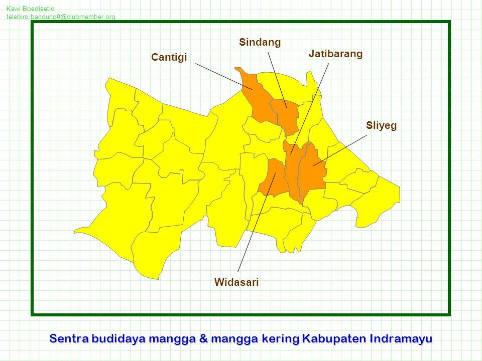 Kawi Boedisetio telebiro.bandung0@clubmember.org Sentra budidaya mangga & mangga kering Kabupaten Indramayu Jatibarang Sliyeg Cantigi Sindang Widasari
