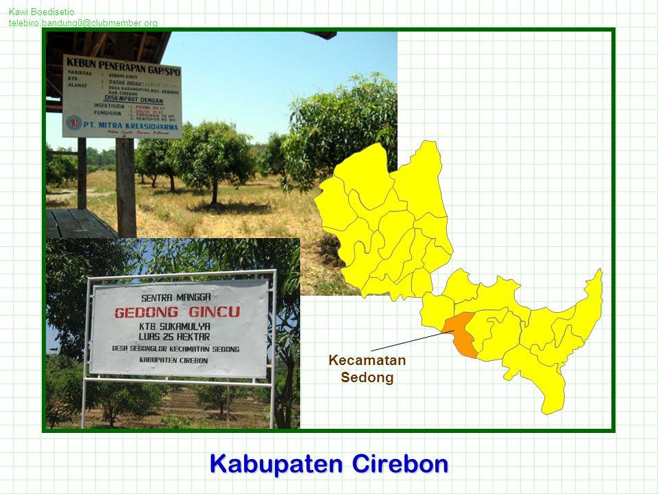 Kawi Boedisetio telebiro.bandung0@clubmember.org Kabupaten Cirebon Kecamatan Sedong