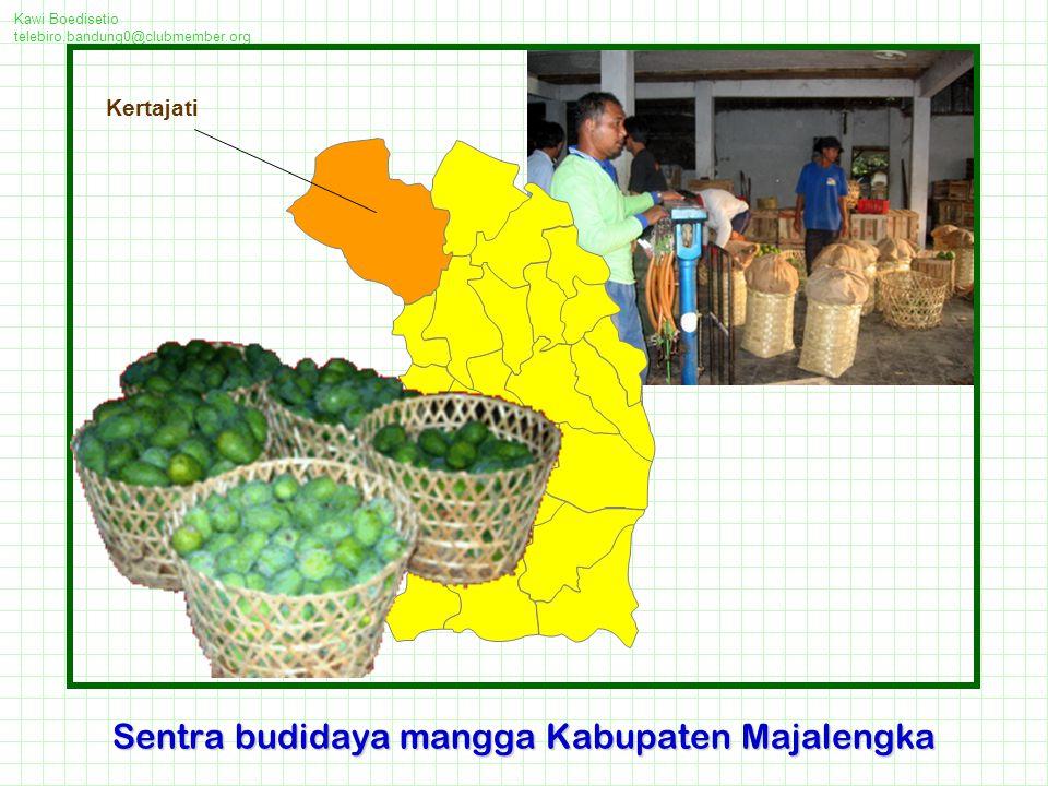 Kawi Boedisetio telebiro.bandung0@clubmember.org Majalengka merupakan salah satu daerah sentra mangga di Jawa Barat Sentra industri mangga Majalengka ada di lima kecamatan, yakni : Kec.Kadipaten, Kec.
