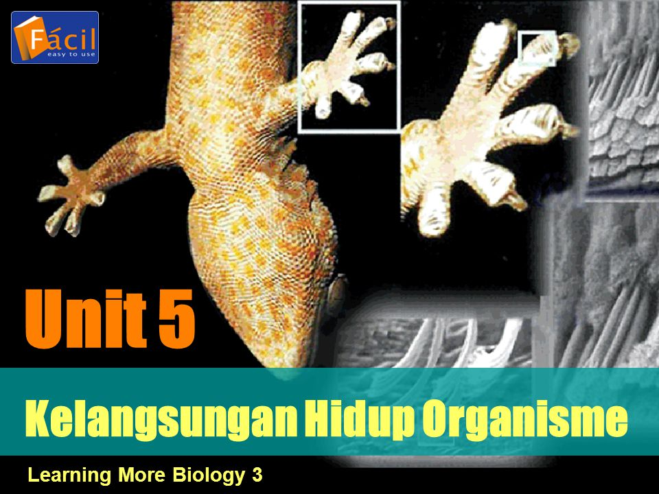 Kelangsungan Hidup Organisme Unit 5 Learning More Biology 3