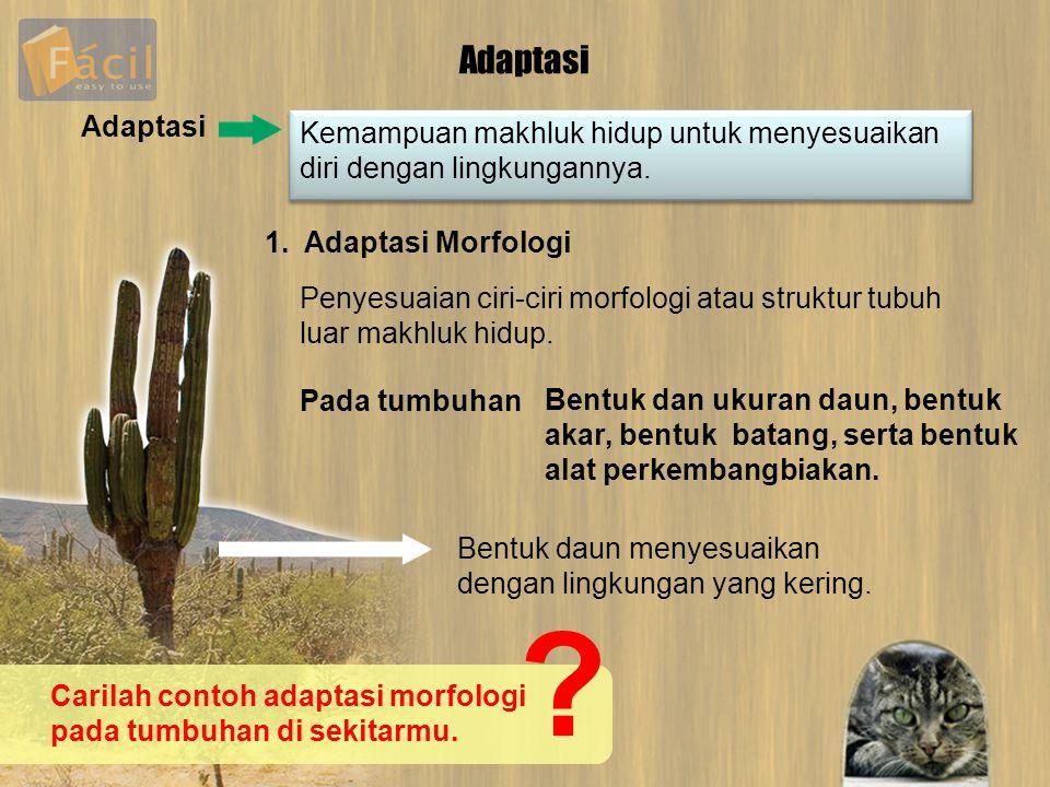 Adaptasi Kemampuan makhluk hidup untuk menyesuaikan diri dengan lingkungannya. Adaptasi 1. Adaptasi Morfologi Penyesuaian ciri-ciri morfologi atau str