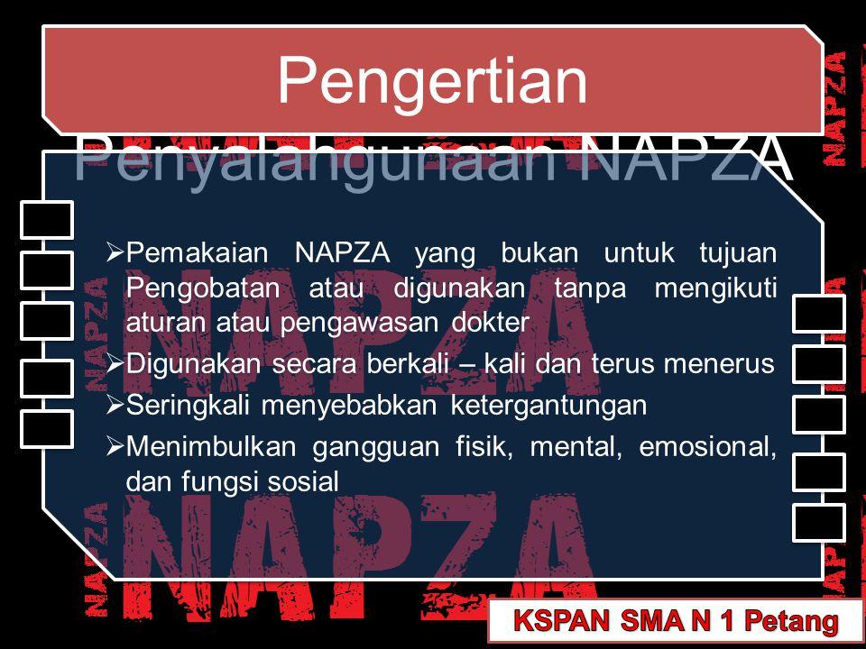 Pengertian Penyalahgunaan NAPZA Pengertian Penyalahgunaan NAPZA  Pemakaian NAPZA yang bukan untuk tujuan Pengobatan atau digunakan tanpa mengikuti at