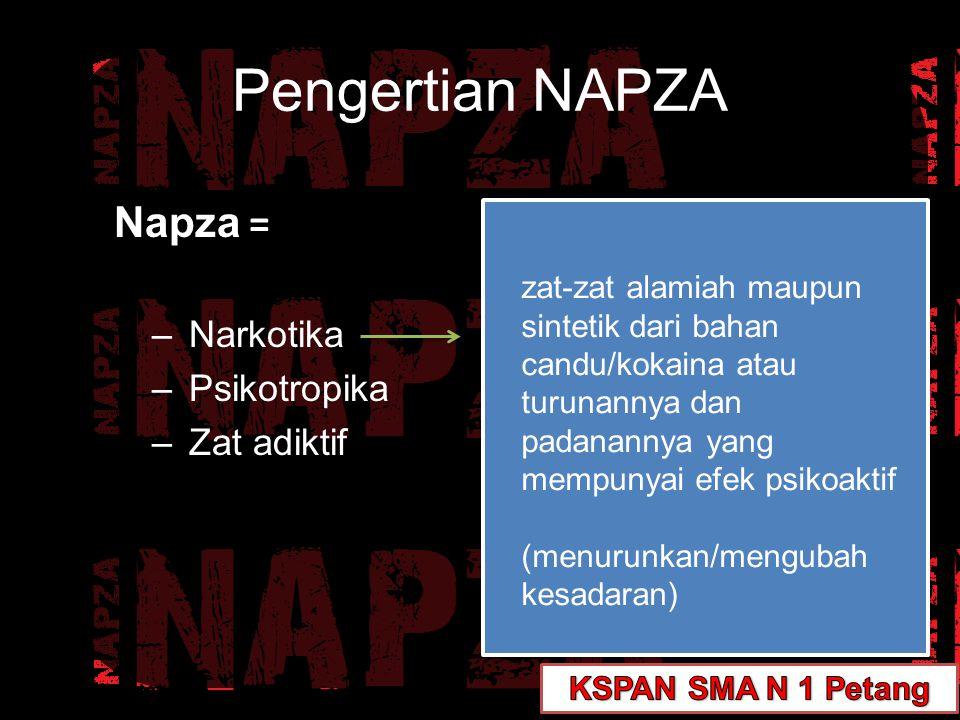 Napza = –Narkotika –Psikotropika –Zat adiktif zat atau obat, baik alamiah maupun sintetis bukan narkotika, yang berkhasiat psikoaktif (perubahan khas pada aktivitas mental dan perilaku) Pengertian NAPZA