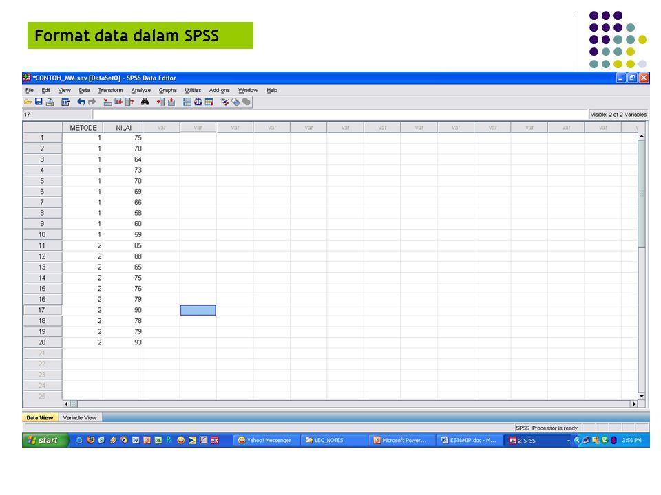 Format data dalam SPSS