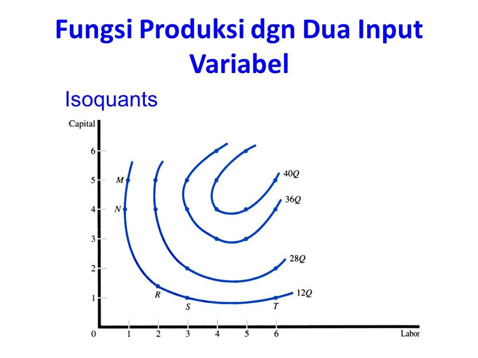 Isoquants Fungsi Produksi dgn Dua Input Variabel