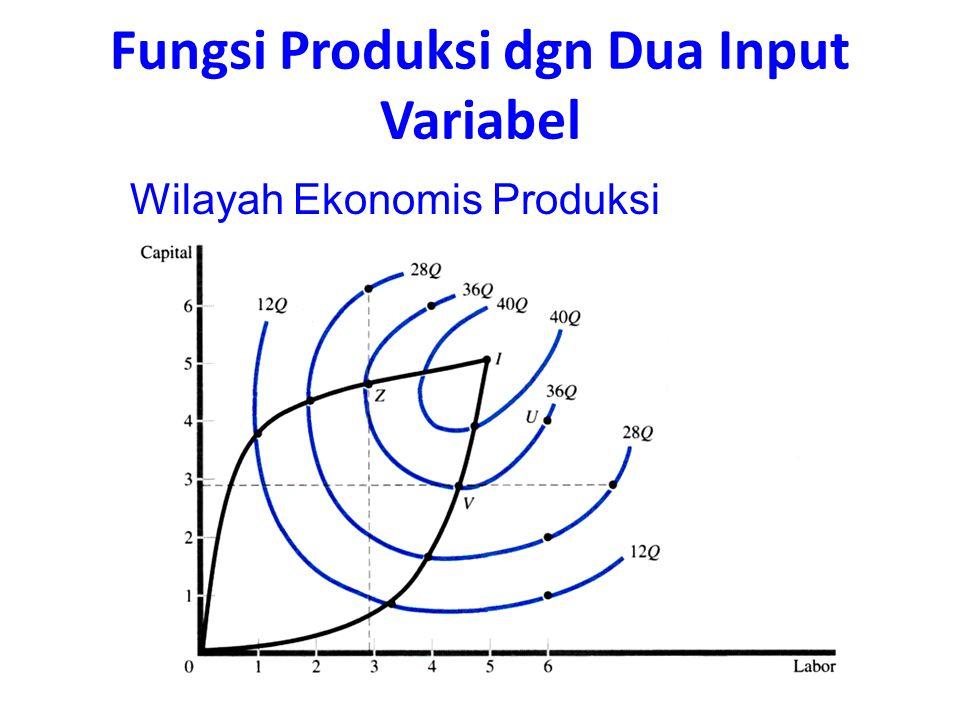 Wilayah Ekonomis Produksi Fungsi Produksi dgn Dua Input Variabel
