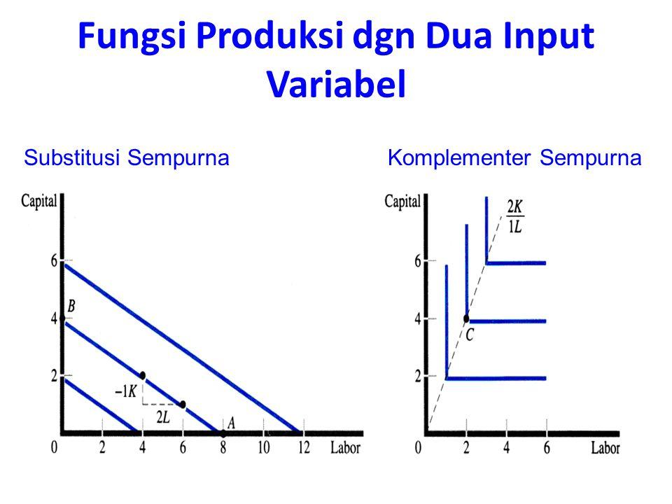Substitusi SempurnaKomplementer Sempurna Fungsi Produksi dgn Dua Input Variabel