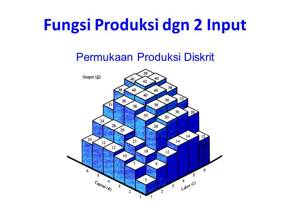 Fungsi Produksi dgn 2 Input Permukaan Produksi Diskrit