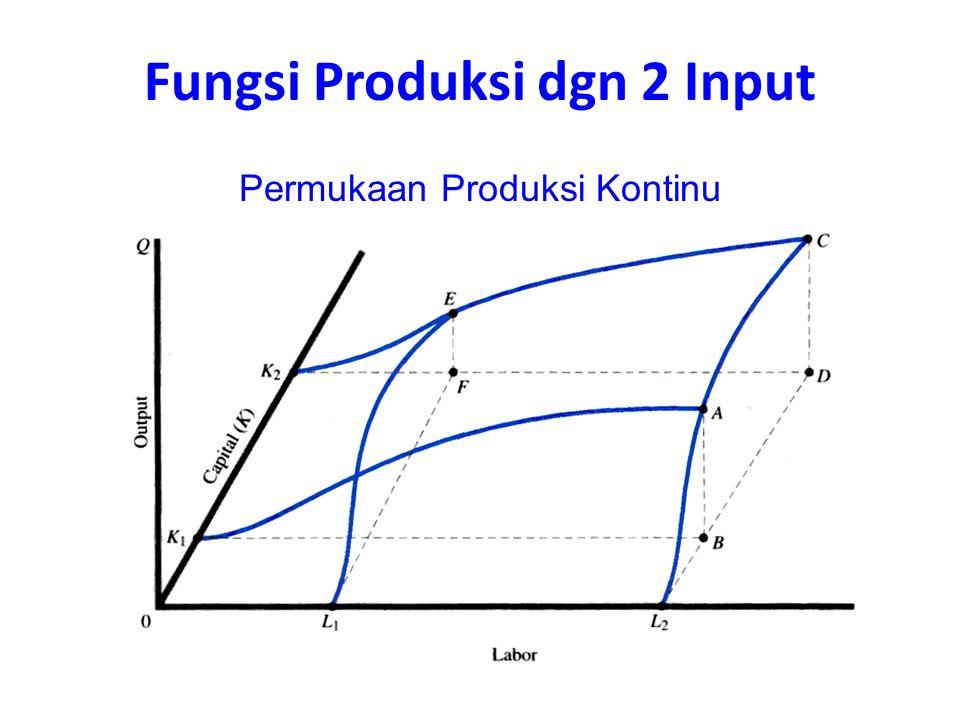 Permukaan Produksi Kontinu Fungsi Produksi dgn 2 Input