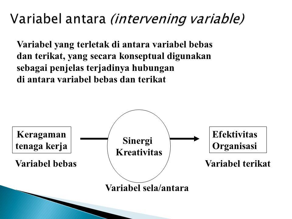Variabel yang terletak di antara variabel bebas dan terikat, yang secara konseptual digunakan sebagai penjelas terjadinya hubungan di antara variabel