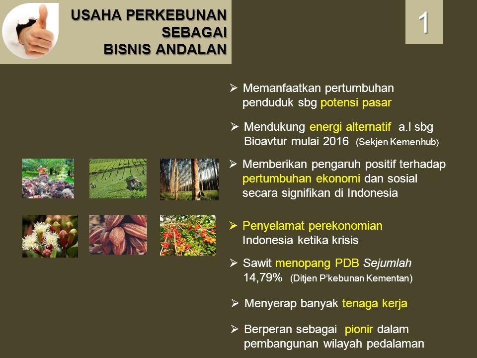 USAHA PERKEBUNAN SEBAGAI BISNIS ANDALAN 1111  Penyelamat perekonomian Indonesia ketika krisis  Memberikan pengaruh positif terhadap pertumbuhan ekon