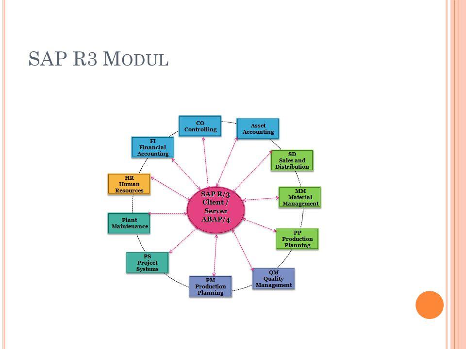 SAP R3 M ODUL