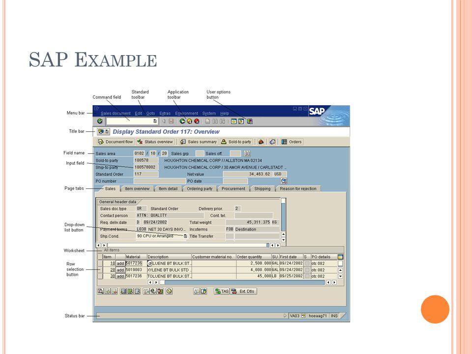 SAP E XAMPLE