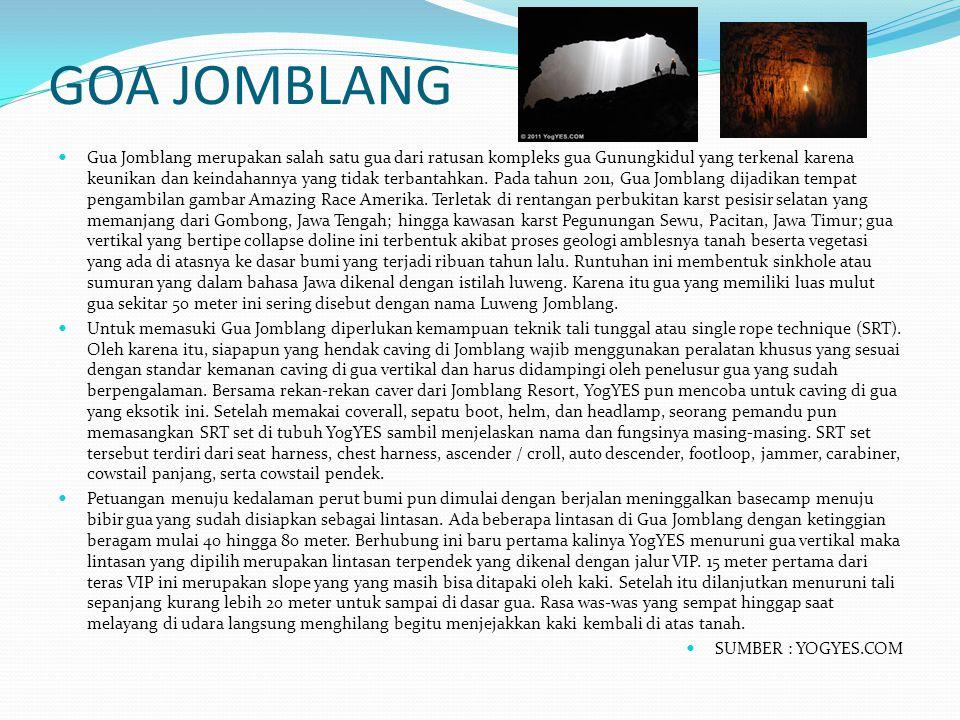 GOA JOMBLANG Gua Jomblang merupakan salah satu gua dari ratusan kompleks gua Gunungkidul yang terkenal karena keunikan dan keindahannya yang tidak ter