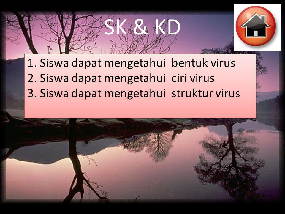 SK & KD 1. Siswa dapat mengetahui bentuk virus 2. Siswa dapat mengetahui ciri virus 3. Siswa dapat mengetahui struktur virus 1. Siswa dapat mengetahui