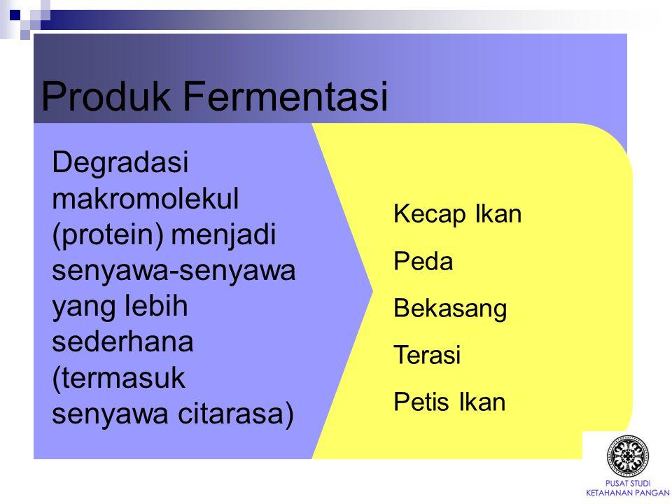 Produk Fermentasi Degradasi makromolekul (protein) menjadi senyawa-senyawa yang lebih sederhana (termasuk senyawa citarasa) Kecap Ikan Peda Bekasang T