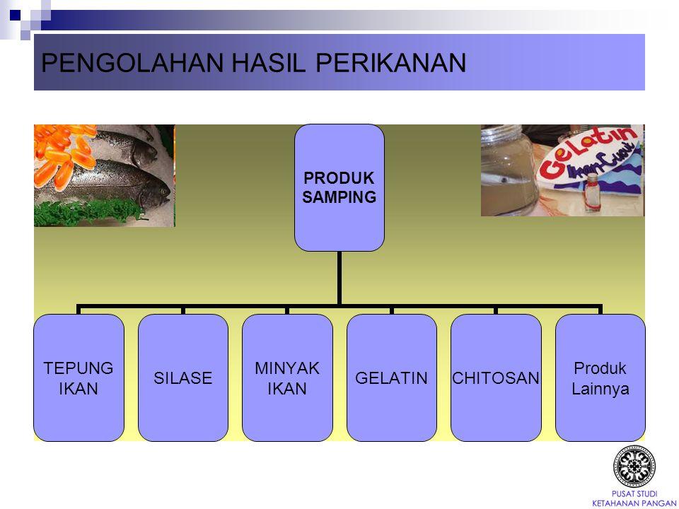 Produk Fermentasi Degradasi makromolekul (protein) menjadi senyawa-senyawa yang lebih sederhana (termasuk senyawa citarasa) Kecap Ikan Peda Bekasang Terasi Petis Ikan