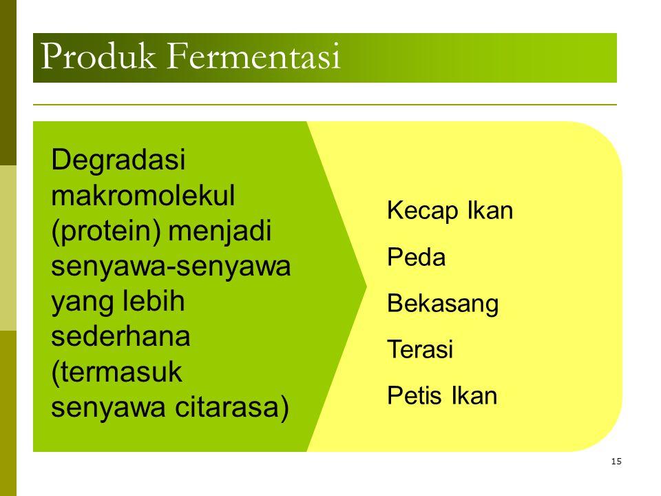 Produk Fermentasi 15 Degradasi makromolekul (protein) menjadi senyawa-senyawa yang lebih sederhana (termasuk senyawa citarasa) Kecap Ikan Peda Bekasan