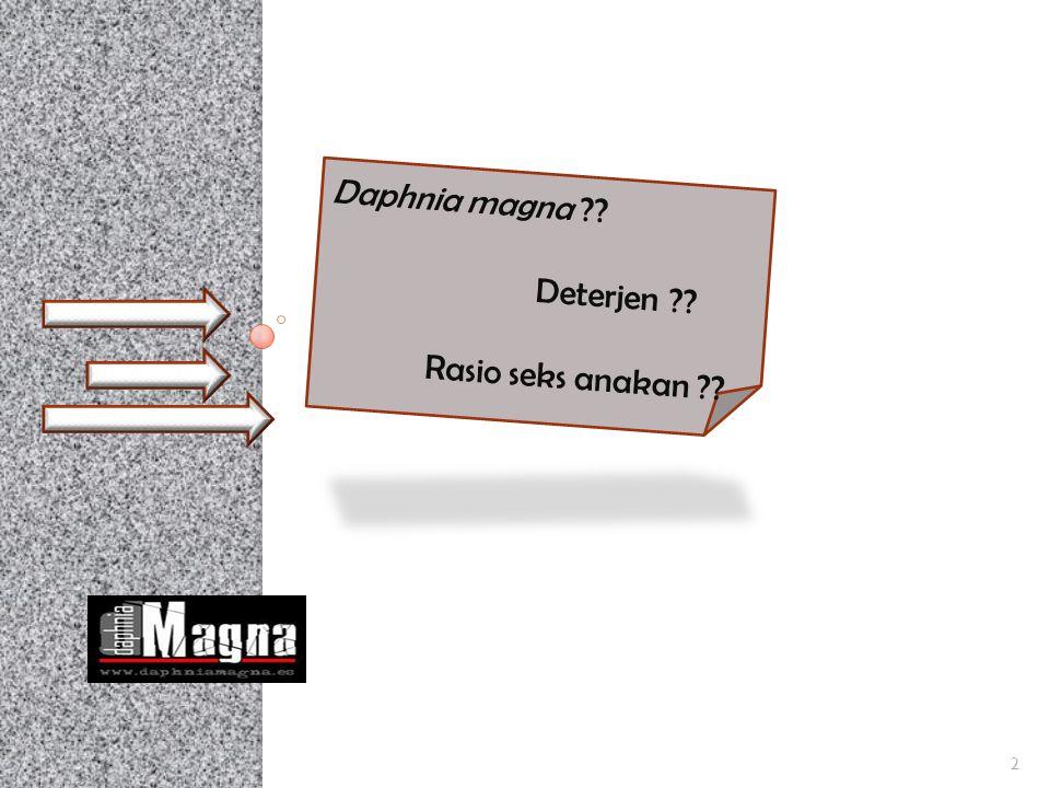 Metode Penelitian 13 Penyediaan Daphnia magna dewasa kelamiin Pengujian save concentration deterjen LAS terhadap 26 individu Daphnia magna A kontrol B 0,1 mg/L C 0,2 mg/L D 0,3 mg/L E 0,4 mg/L 4 ulangan Pengamatan rasio seks anakan Daphnia magna stlh 96 jam dengan mengamati sampel anakan Daphnia magna Pengukuran kualitas air Analisa data